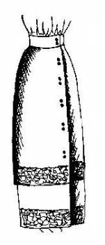 1910 - 1916 Hobble Skirt Pattern