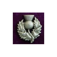 Heavy Scottish Pewter Thistle Pin
