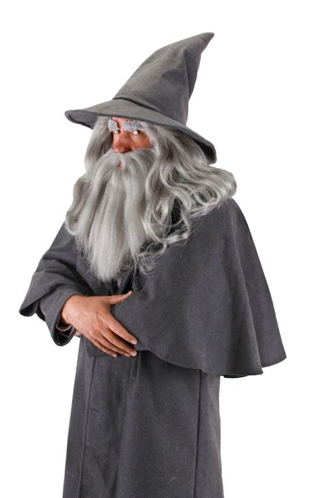 Officially Licensed Gandalf Beard and Wig, Gray, One Size